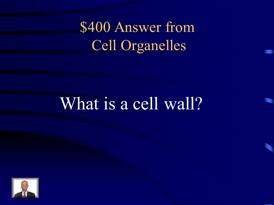 $400 Question from Cell Organelles Provides support and protection for a plant cell.