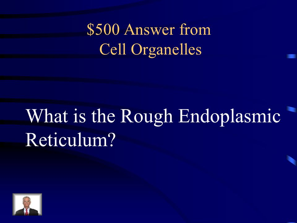 $500 Question from Cell Organelles Has ribosomes that produce necessary proteins for the cell.