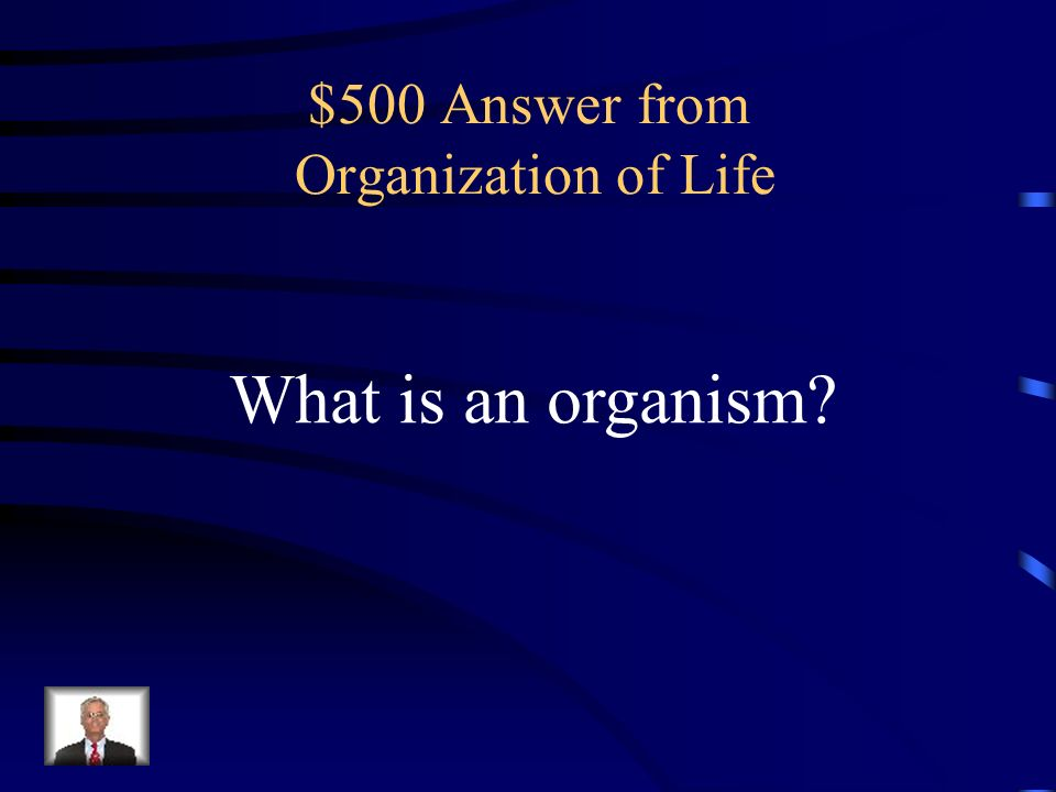 $500 Question from Organization of Life Organ systems that work together.