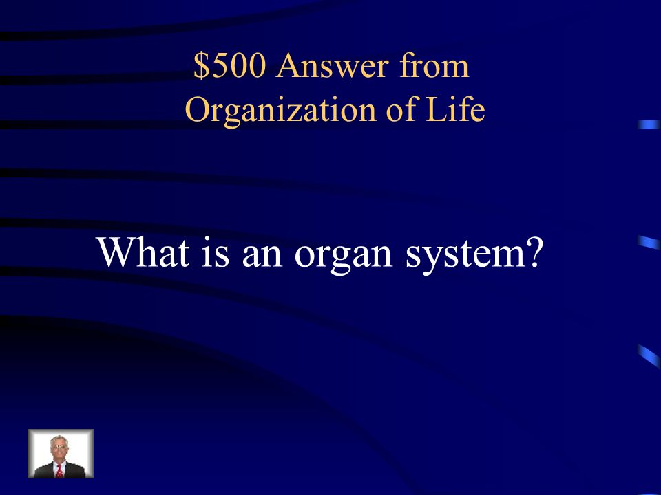 $500 Question from Organization of Life Together, your mouth, esophagus, stomach, intestines, and liver make one of these.