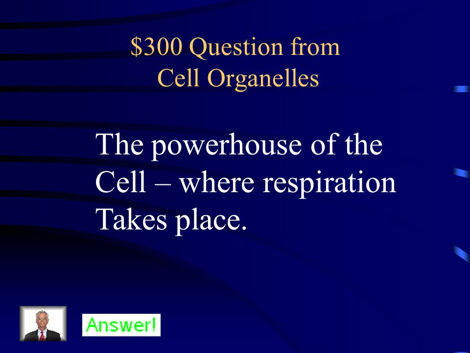 $300 Question from Cell Organelles The powerhouse of the Cell – where respiration Takes place.