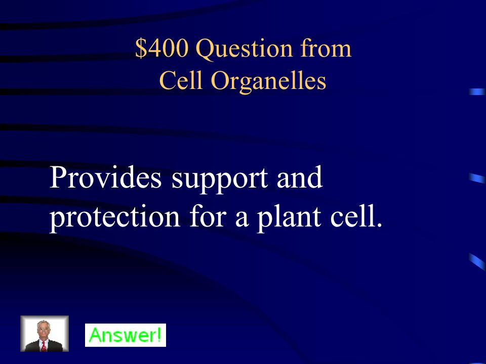 $400 Question from Organization of Life Organs that work together.