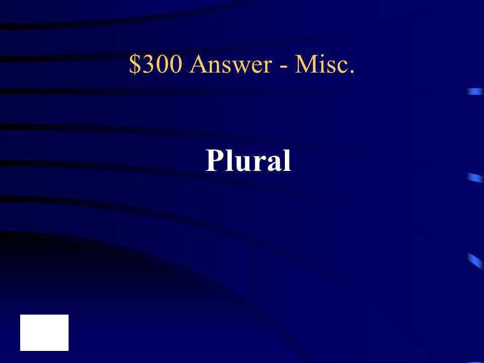 $300 Answer - Misc. Plural