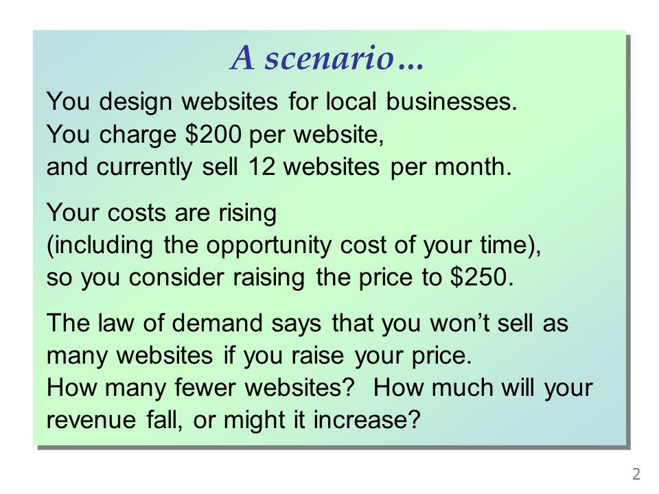You design websites for local businesses.