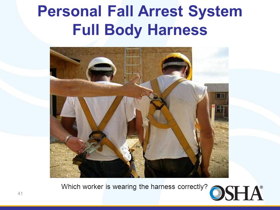 41 Personal Fall Arrest System Full Body Harness Which worker is wearing the harness correctly?