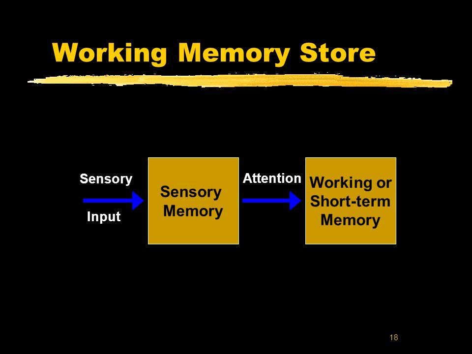 18 Working Memory Store Working or Short-term Memory Sensory Input Sensory Memory Attention