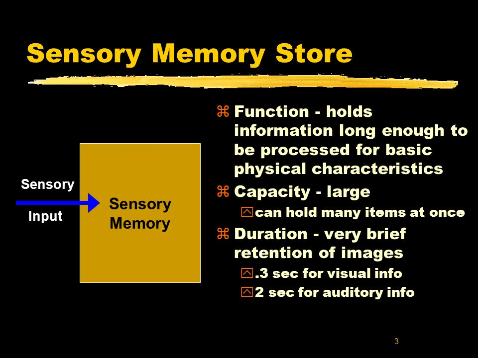 3 Sensory Memory Store zFunction - holds information long enough to be processed for basic physical characteristics zCapacity - large ycan hold many i