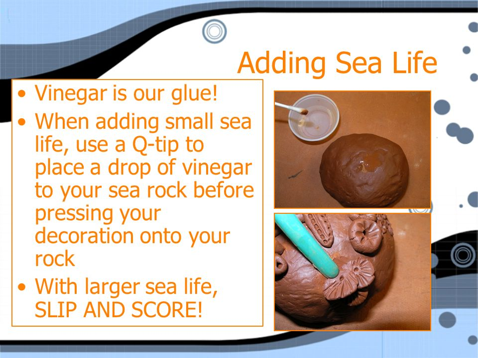 Adding Sea Life Vinegar is our glue.