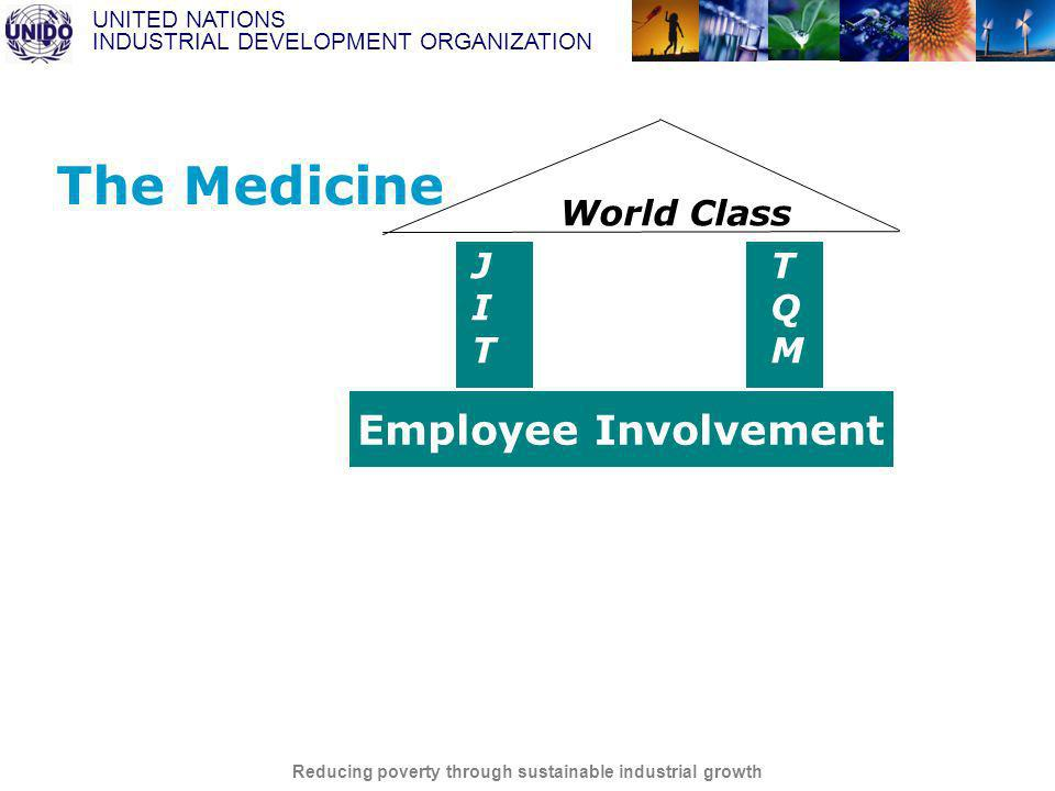 UNITED NATIONS INDUSTRIAL DEVELOPMENT ORGANIZATION Reducing poverty through sustainable industrial growth RESULTS Supplier Partnerships World Class Manufacturing Competitive Products and Services Business Process Management Customer Partnerships World Class JITJIT Employee Involvement TQMTQM The Medicine