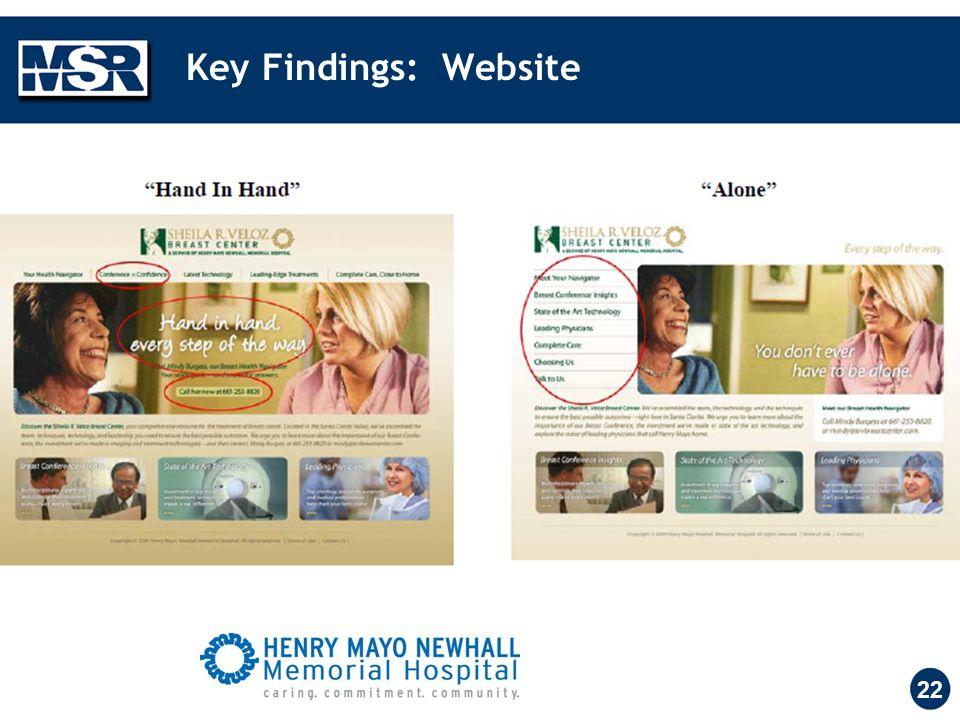 Key Findings: Website 22