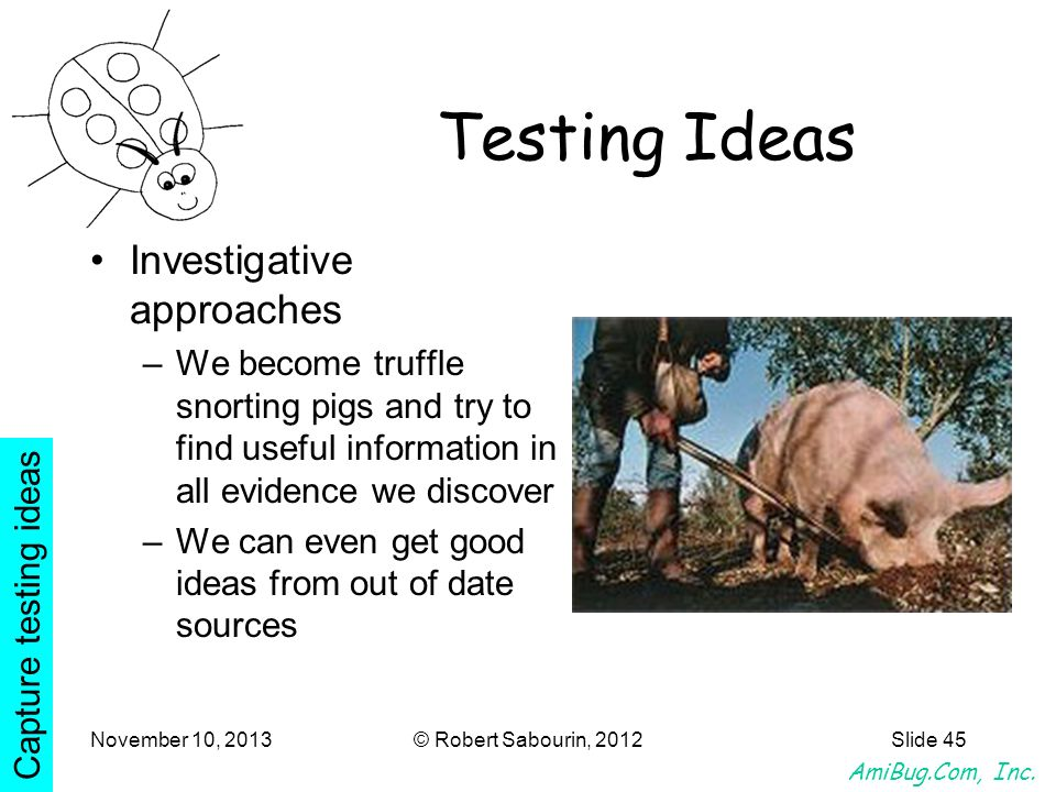 AmiBug.Com, Inc. November 10, 2013© Robert Sabourin, 2012Slide 45 Testing Ideas Investigative approaches –We become truffle snorting pigs and try to f