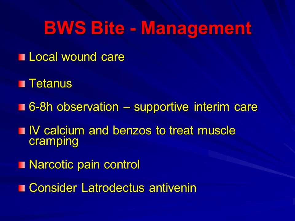 BWS Bite - Management Local wound care Tetanus 6-8h observation – supportive interim care IV calcium and benzos to treat muscle cramping Narcotic pain