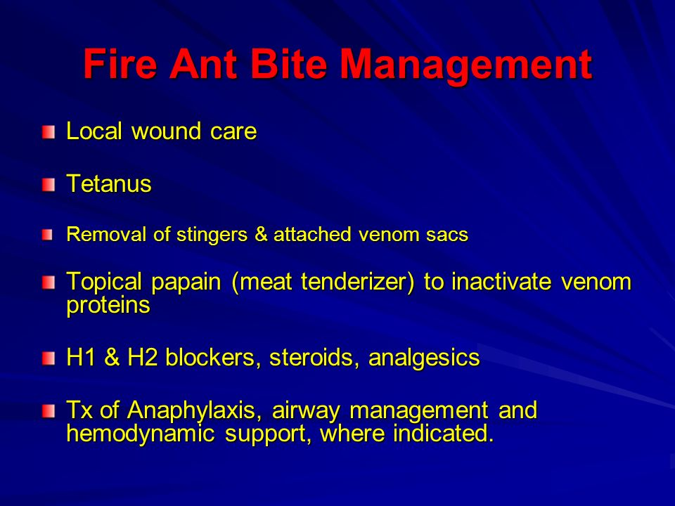 Fire Ant Bite Management Local wound care Tetanus Removal of stingers & attached venom sacs Topical papain (meat tenderizer) to inactivate venom prote