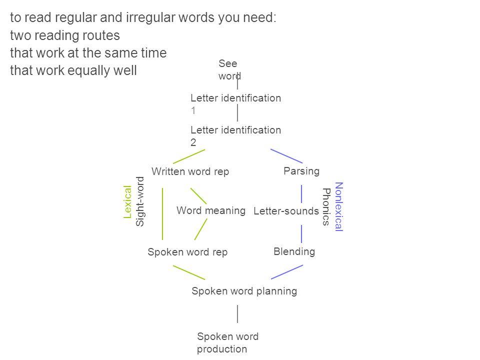 See word Spoken word production Letter identification 1 Letter identification 2 Parsing Letter-sounds Blending Spoken word planning Written word rep S
