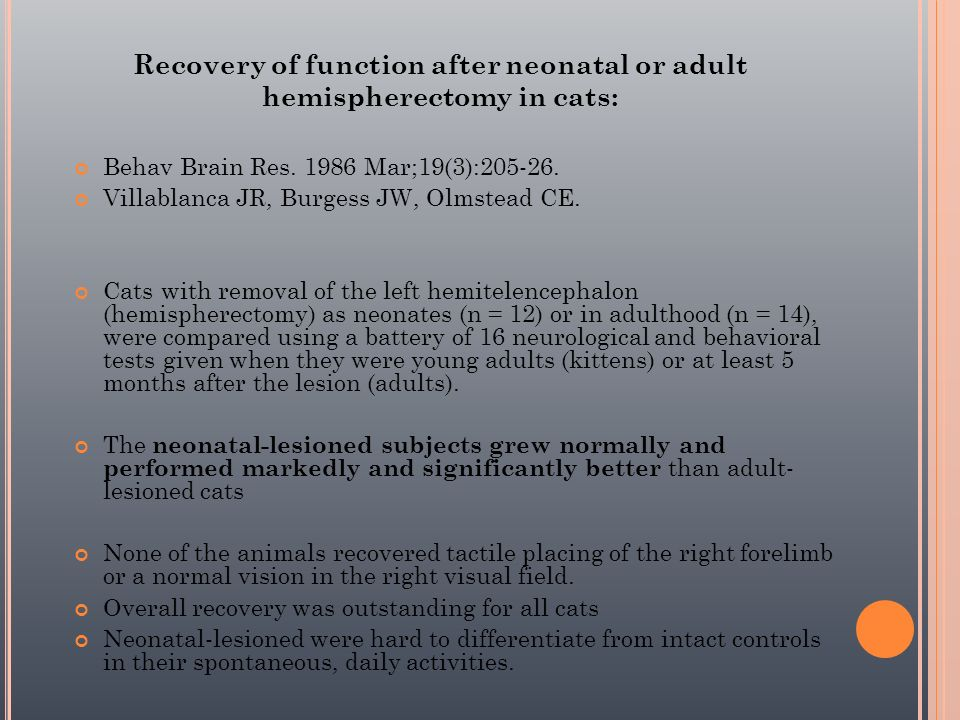 Recovery of function after neonatal or adult hemispherectomy in cats: Behav Brain Res. 1986 Mar;19(3):205-26. Villablanca JR, Burgess JW, Olmstead CE.