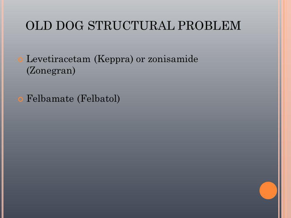 OLD DOG STRUCTURAL PROBLEM Levetiracetam (Keppra) or zonisamide (Zonegran) Felbamate (Felbatol)