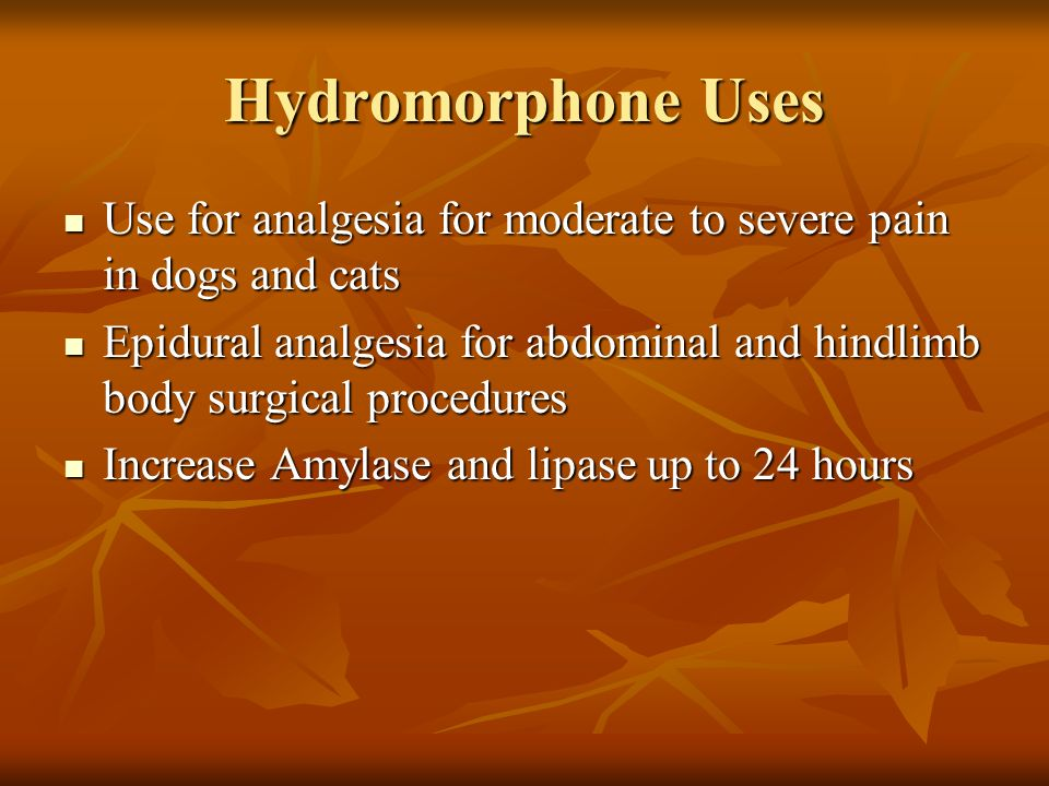 Hydromorphone Uses Use for analgesia for moderate to severe pain in dogs and cats Use for analgesia for moderate to severe pain in dogs and cats Epidu