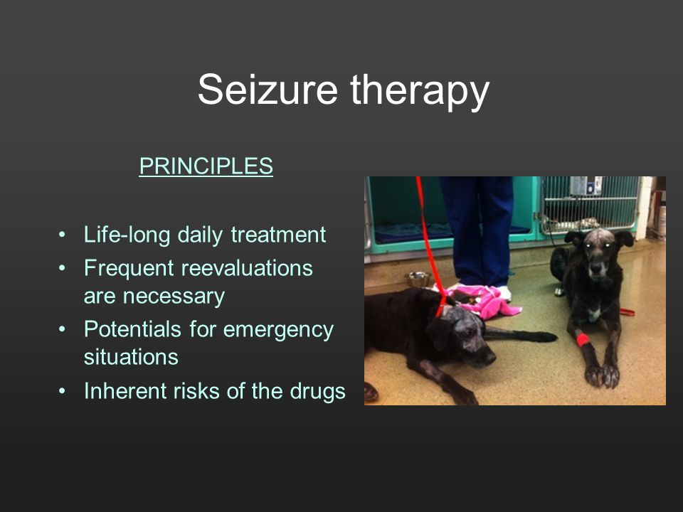 Seizure therapy PRINCIPLES Life-long daily treatment Frequent reevaluations are necessary Potentials for emergency situations Inherent risks of the dr