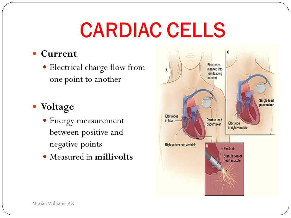CARDIAC CELLS Current Electrical charge flow from one point to another Voltage Energy measurement between positive and negative points Measured in mil