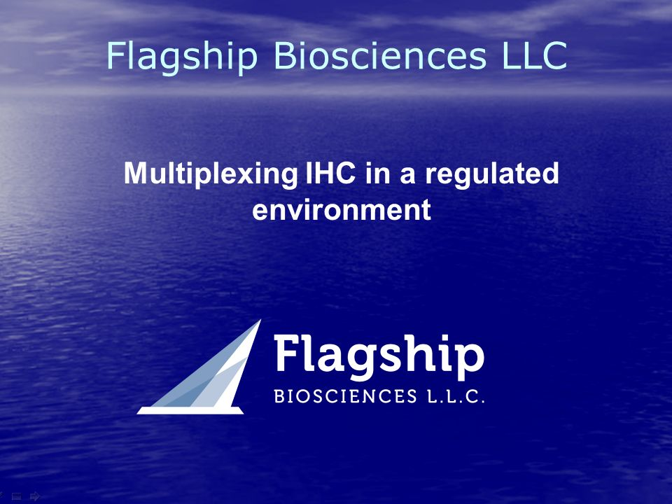 Flagship Biosciences LLC Multiplexing IHC in a regulated environment