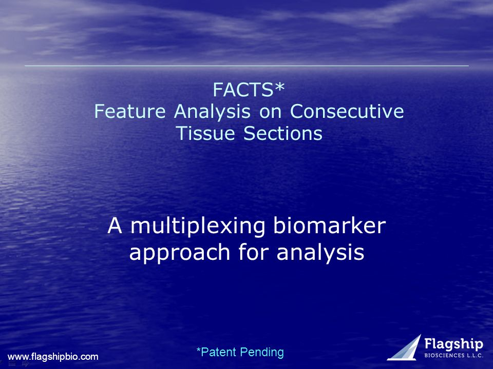 FACTS* Feature Analysis on Consecutive Tissue Sections *Patent Pending A multiplexing biomarker approach for analysis