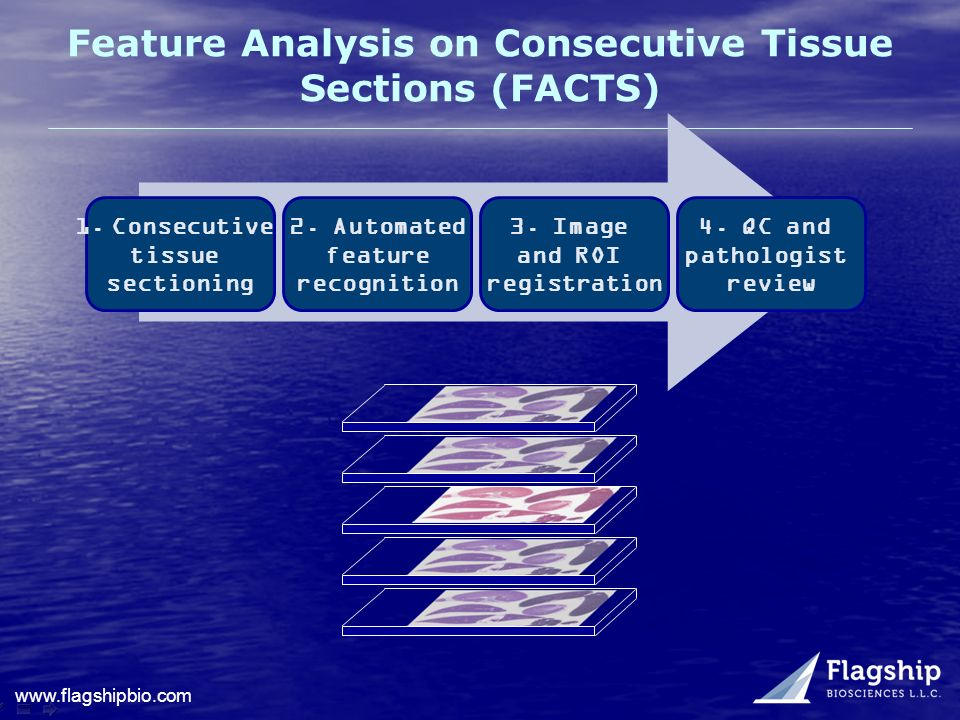 www.flagshipbio.com Feature Analysis on Consecutive Tissue Sections (FACTS) 4. QC and pathologist review 3. Image and ROI registration 2. Automated fe