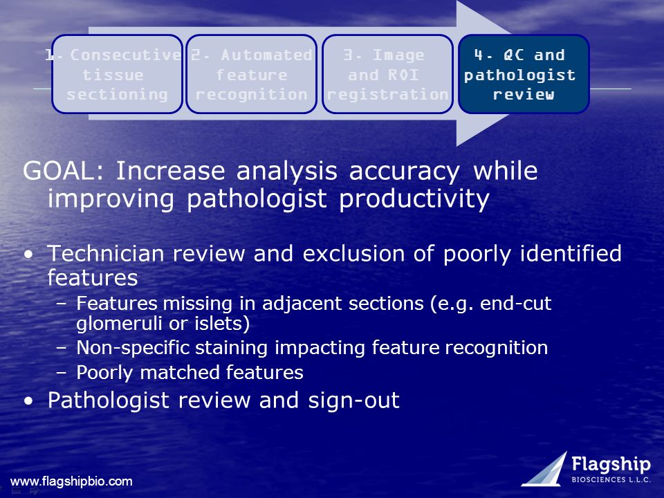 www.flagshipbio.com GOAL: Increase analysis accuracy while improving pathologist productivity Technician review and exclusion of poorly identified fea