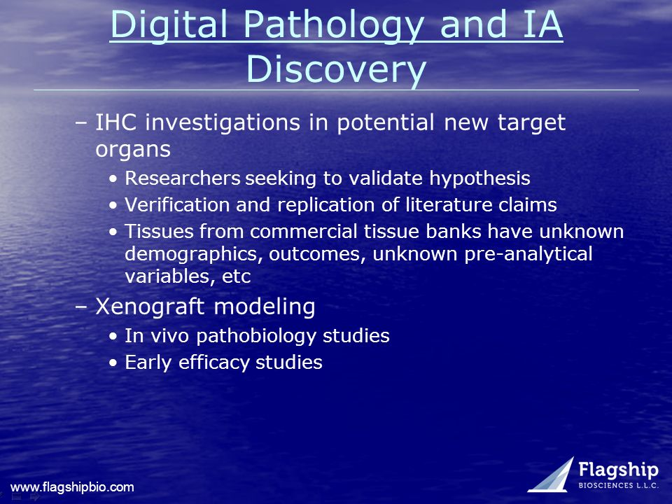 www.flagshipbio.com Digital Pathology and IA Discovery –IHC investigations in potential new target organs Researchers seeking to validate hypothesis V