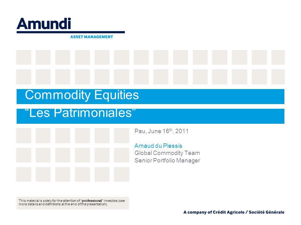 Commodity Equities Les Patrimoniales Pau, June 16 th, 2011 Arnaud du Plessis Global Commodity Team Senior Portfolio Manager This material is solely for the attention of professional investors (see more details and definitions at the end of the presentation).