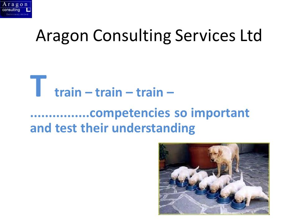 Aragon Consulting Services Ltd T train – train – train – competencies so important and test their understanding