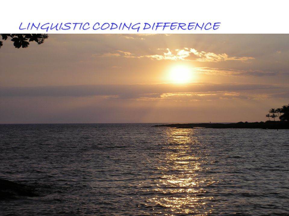 All Rights ReservedKevin T. Blake, Ph.D., P.L.C.61 LINGUISTIC CODING DIFFERENCE