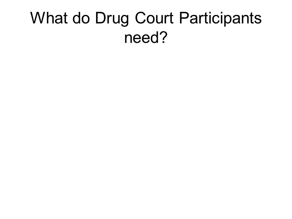 What do Drug Court Participants need?