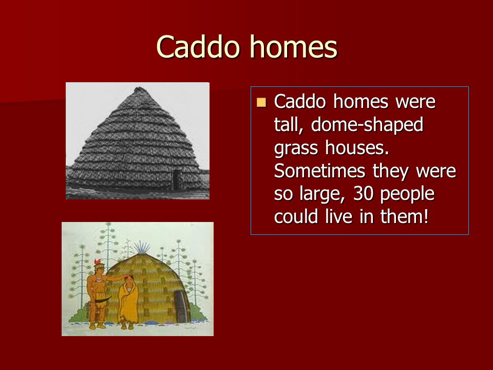 Caddo homes Caddo homes were tall, dome-shaped grass houses. Sometimes they were so large, 30 people could live in them! Caddo homes were tall, dome-s