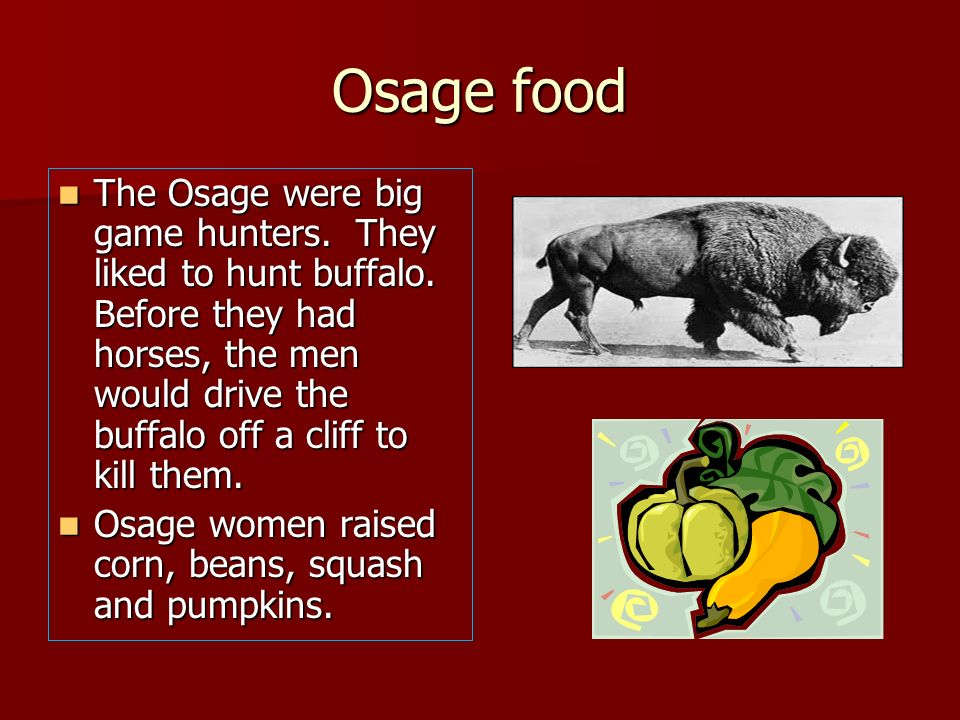 Osage food The Osage were big game hunters. They liked to hunt buffalo. Before they had horses, the men would drive the buffalo off a cliff to kill th