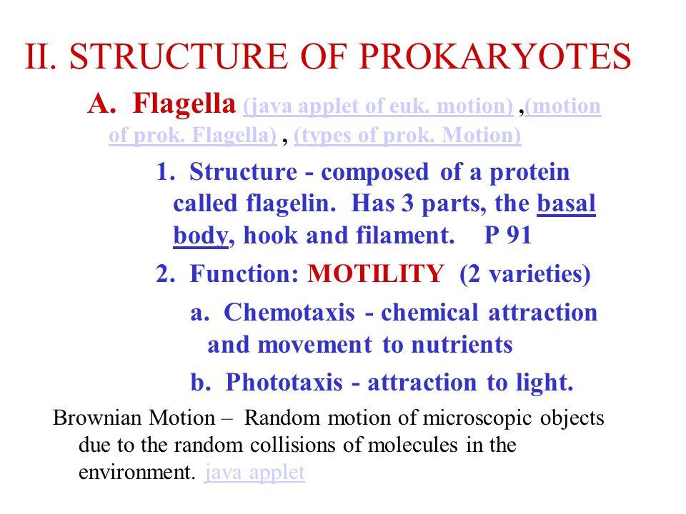 II. STRUCTURE OF PROKARYOTES A. Flagella (java applet of euk. motion),(motion of prok. Flagella), (types of prok. Motion) (java applet of euk. motion)