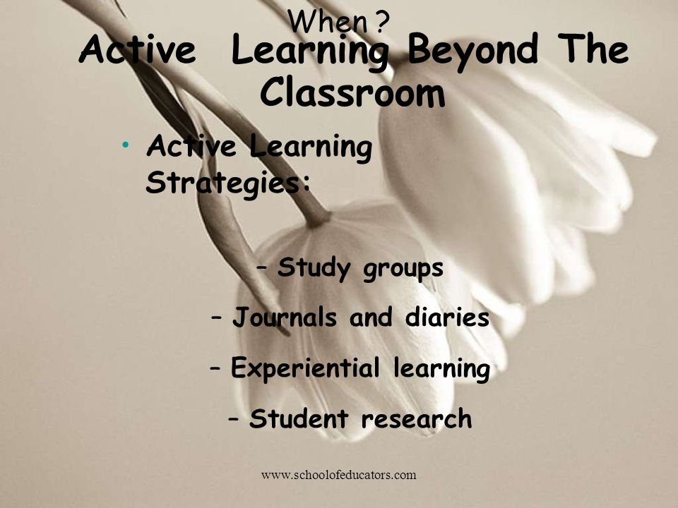 Active Learning Beyond The Classroom Active Learning Strategies: –Study groups –Journals and diaries –Experiential learning –Student research When ? w