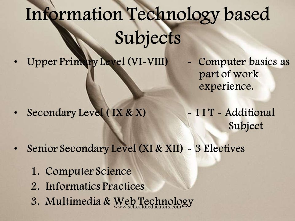 Upper Primary Level (VI-VIII)- Computer basics as part of work experience. Secondary Level ( IX & X)- I I T - Additional Subject Senior Secondary Leve