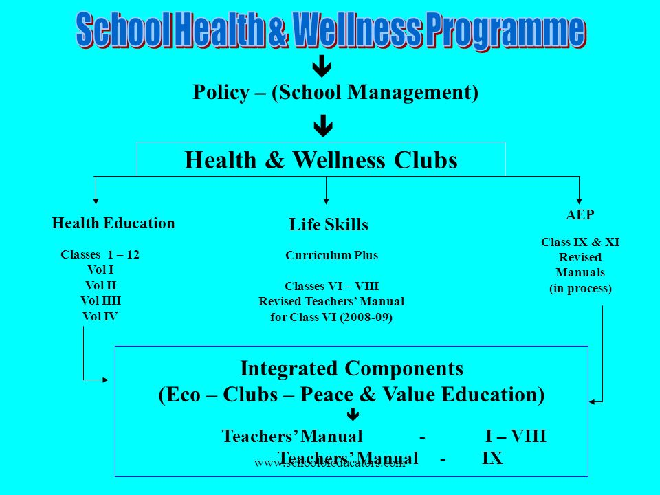 Policy – (School Management) Health & Wellness Clubs Health Education Life Skills AEP Class IX & XI Revised Manuals (in process) Integrated Components