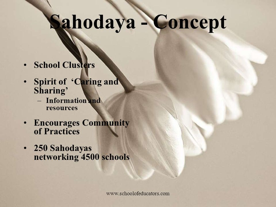 Sahodaya - Concept School Clusters Spirit of Caring and Sharing –Information and resources Encourages Community of Practices 250 Sahodayas networking 4500 schools www.schoolofeducators.com