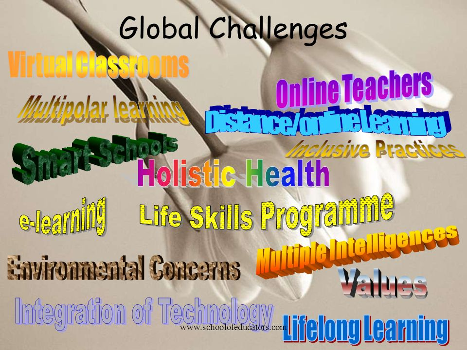 Global Challenges www.schoolofeducators.com