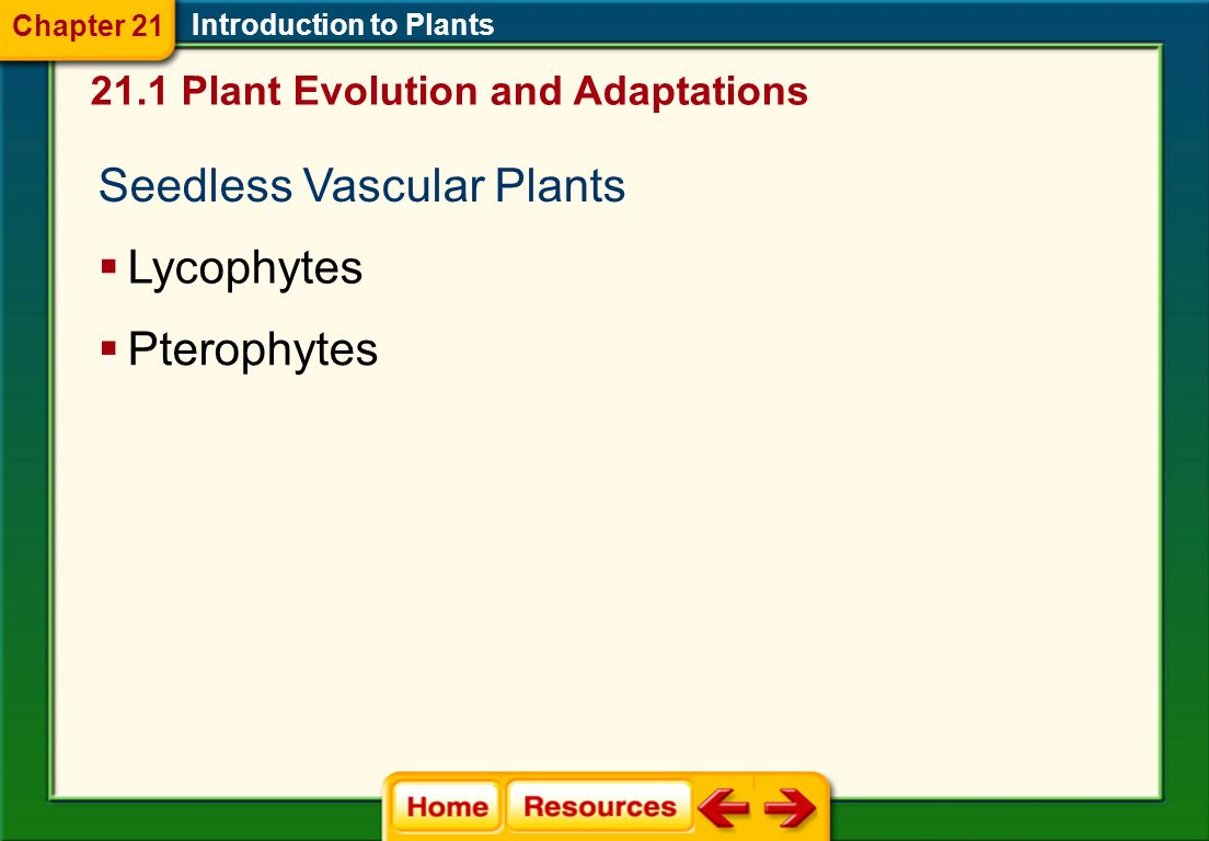 Introduction to Plants Nonvascular plants lack specialized transport tissues.