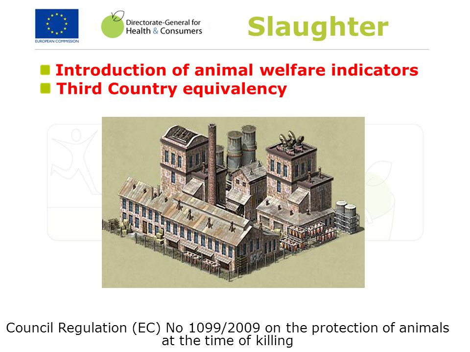 Slaughter Introduction of animal welfare indicators Third Country equivalency Council Regulation (EC) No 1099/2009 on the protection of animals at the
