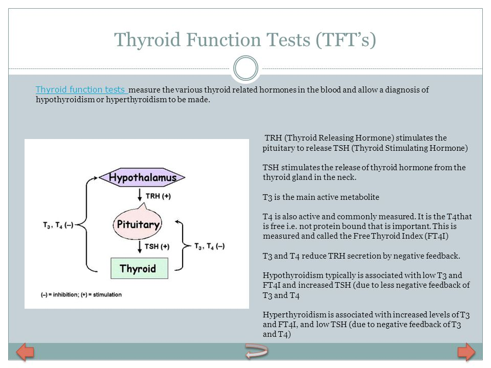 Thyroid Function Tests (TFTs) Thyroid function tests Thyroid function tests measure the various thyroid related hormones in the blood and allow a diag