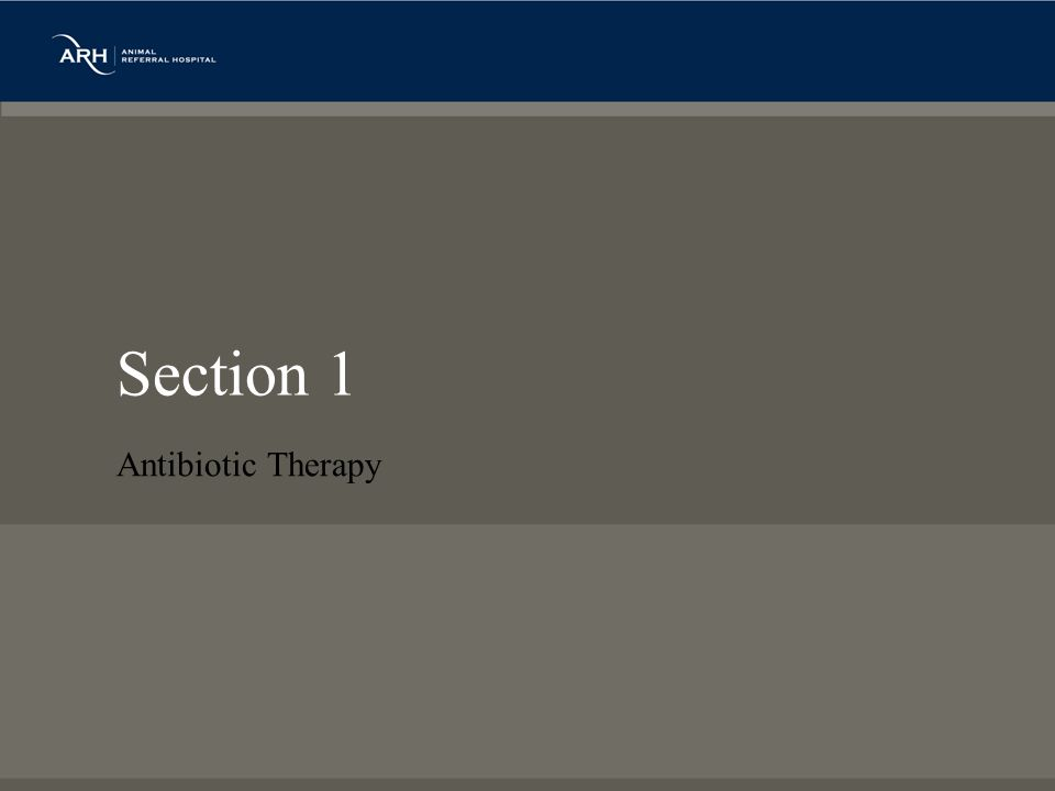 Section 1 Antibiotic Therapy