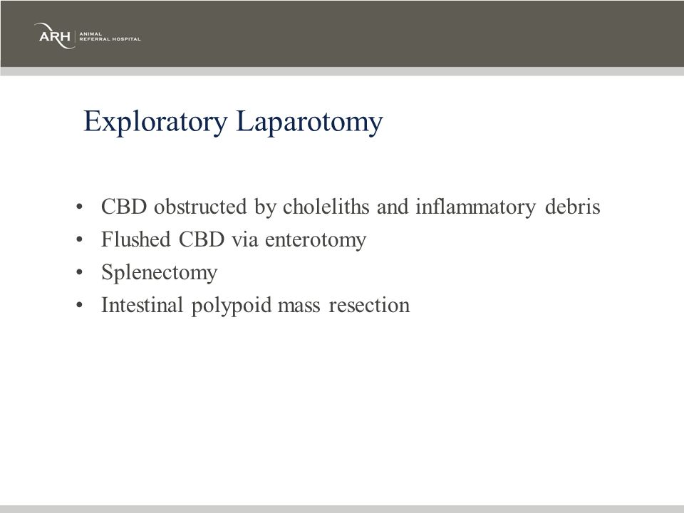 Exploratory Laparotomy CBD obstructed by choleliths and inflammatory debris Flushed CBD via enterotomy Splenectomy Intestinal polypoid mass resection
