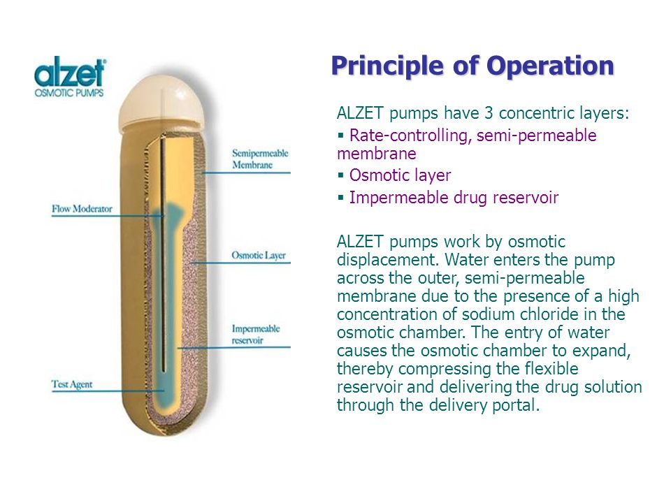 Principle of Operation ALZET pumps have 3 concentric layers: Rate-controlling, semi-permeable membrane Osmotic layer Impermeable drug reservoir ALZET
