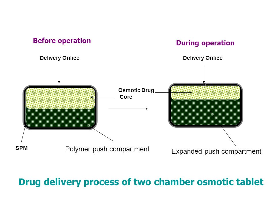 Drug delivery process of two chamber osmotic tablet Osmotic Drug Core SPM Delivery Orifice Polymer push compartment Expanded push compartment Before o