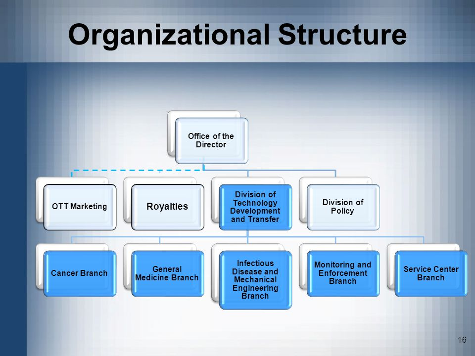 16 Organizational Structure Office of the Director OTT Marketing Royalties Division of Technology Development and Transfer Cancer Branch General Medic