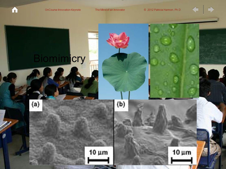 OnCourse Innovation Keynote The Mind of an Innovator © 2012 Patricia Harmon, Ph.D.