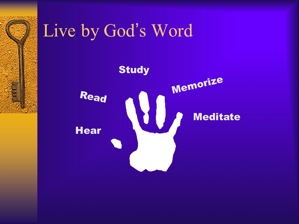 Live by God s Word Study Memorize Hear Read Meditate